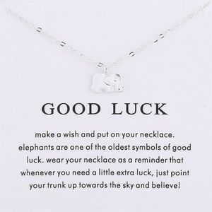 Jewelry - GOOD LUCK Women Necklace SilveTone Clavicle Chains